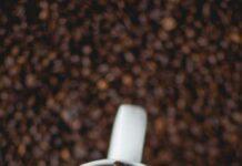 Jak wybrać najlepszą kawiarkę